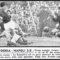 Serie A 1955/56: Sampdoria-Napoli 3-0